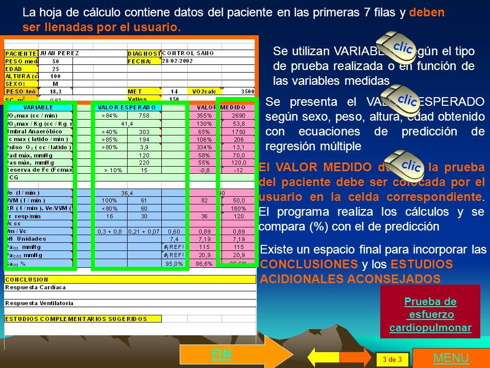 La hoja de cálculo contiene datos del paciente en las primeras 7 filas y deben ser llenadas por el usuario.