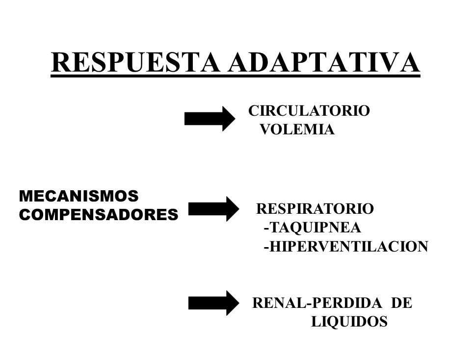 RESPUESTA ADAPTATIVA CIRCULATORIO VOLEMIA MECANISMOS COMPENSADORES