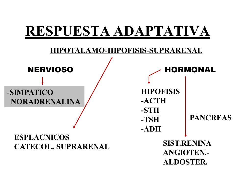HIPOTALAMO-HIPOFISIS-SUPRARENAL