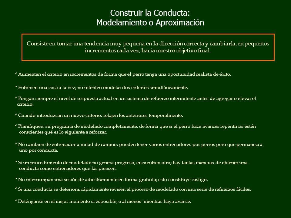 Construir la Conducta: Modelamiento o Aproximación