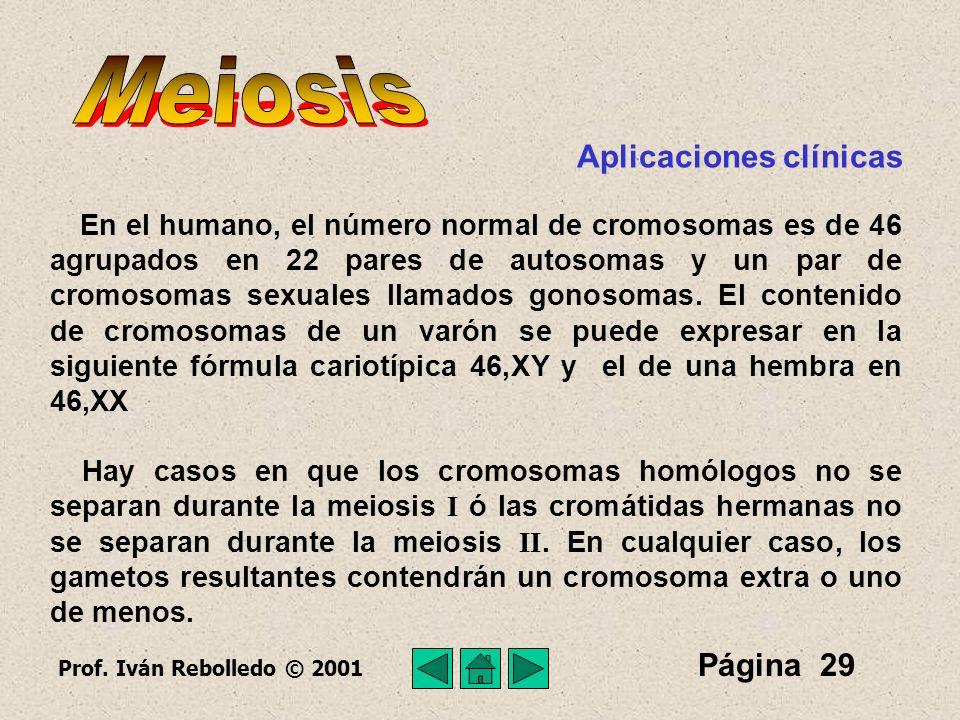 Meiosis Aplicaciones clínicas Página 29