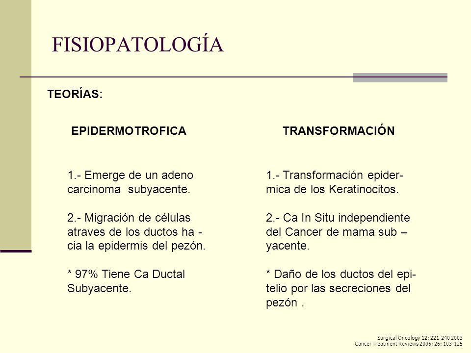 FISIOPATOLOGÍA TEORÍAS: EPIDERMOTROFICA TRANSFORMACIÓN