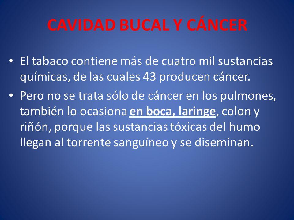 CAVIDAD BUCAL Y CÁNCER El tabaco contiene más de cuatro mil sustancias químicas, de las cuales 43 producen cáncer.