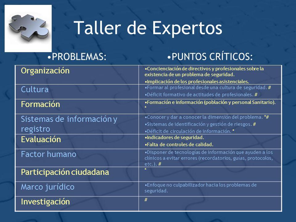 Taller de Expertos PROBLEMAS: PUNTOS CRÍTICOS: Organización Cultura