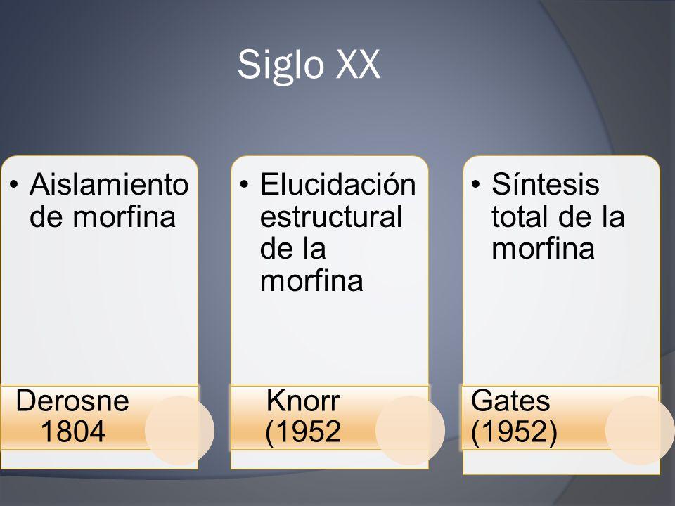 Siglo XX Aislamiento de morfina Elucidación estructural de la morfina