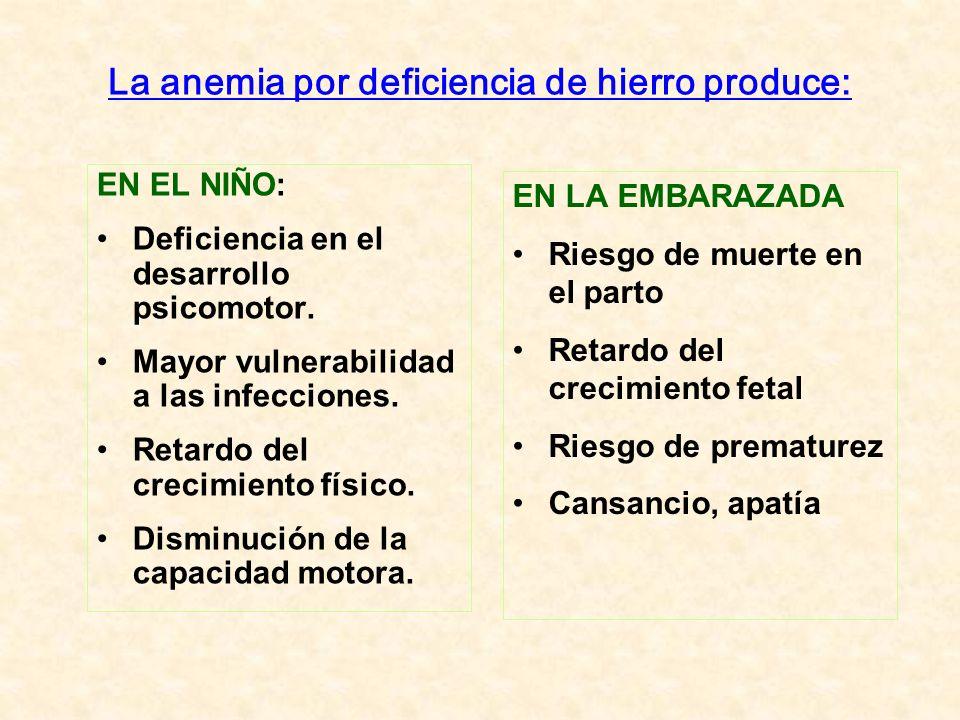 La anemia por deficiencia de hierro produce: