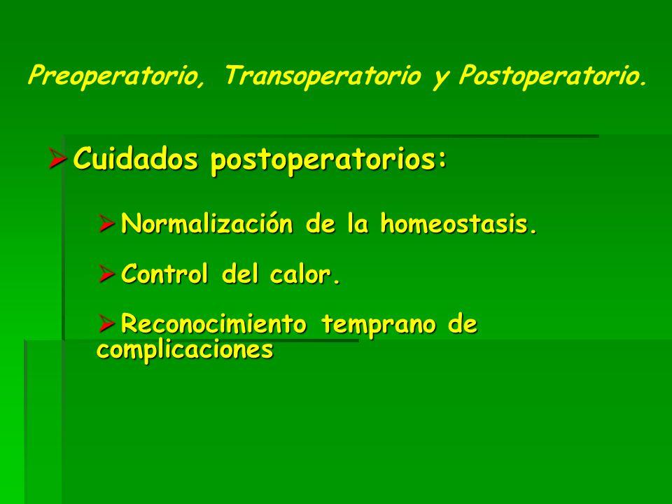 Cuidados postoperatorios: