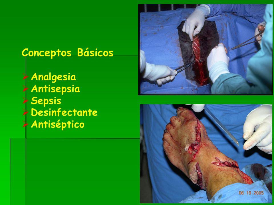 Conceptos Básicos Analgesia Antisepsia Sepsis Desinfectante