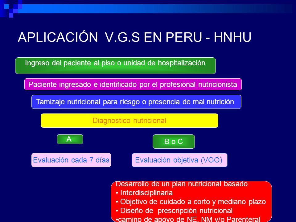 APLICACIÓN V.G.S EN PERU - HNHU