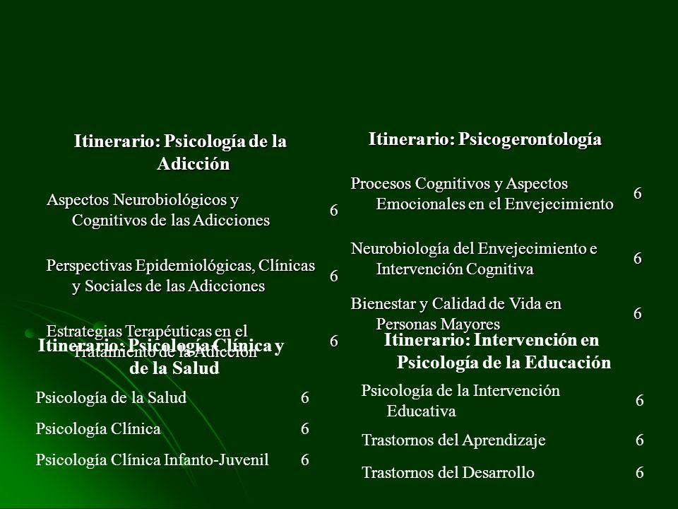 Itinerario: Psicología de la Adicción Itinerario: Psicogerontología