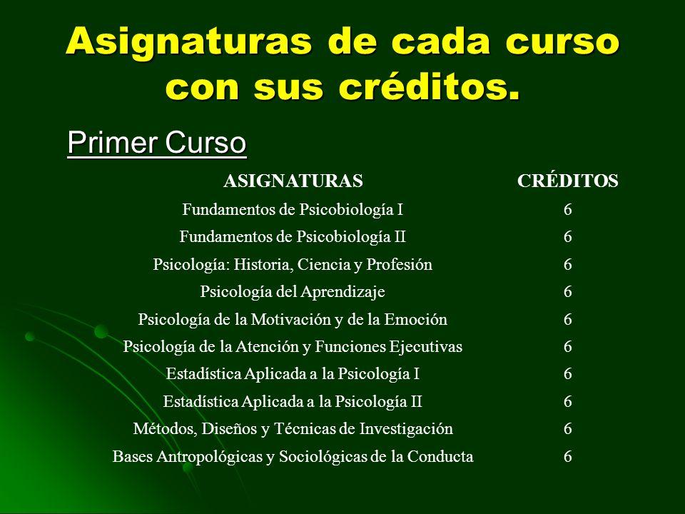 Asignaturas de cada curso con sus créditos.
