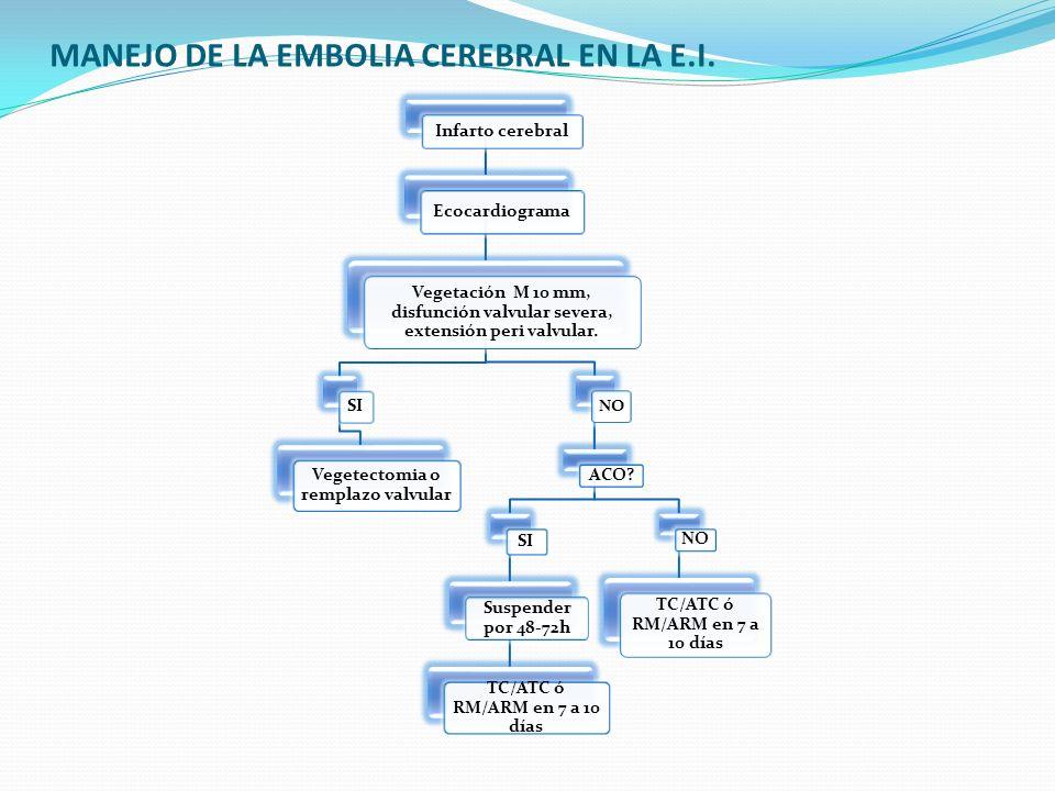 MANEJO DE LA EMBOLIA CEREBRAL EN LA E.I.