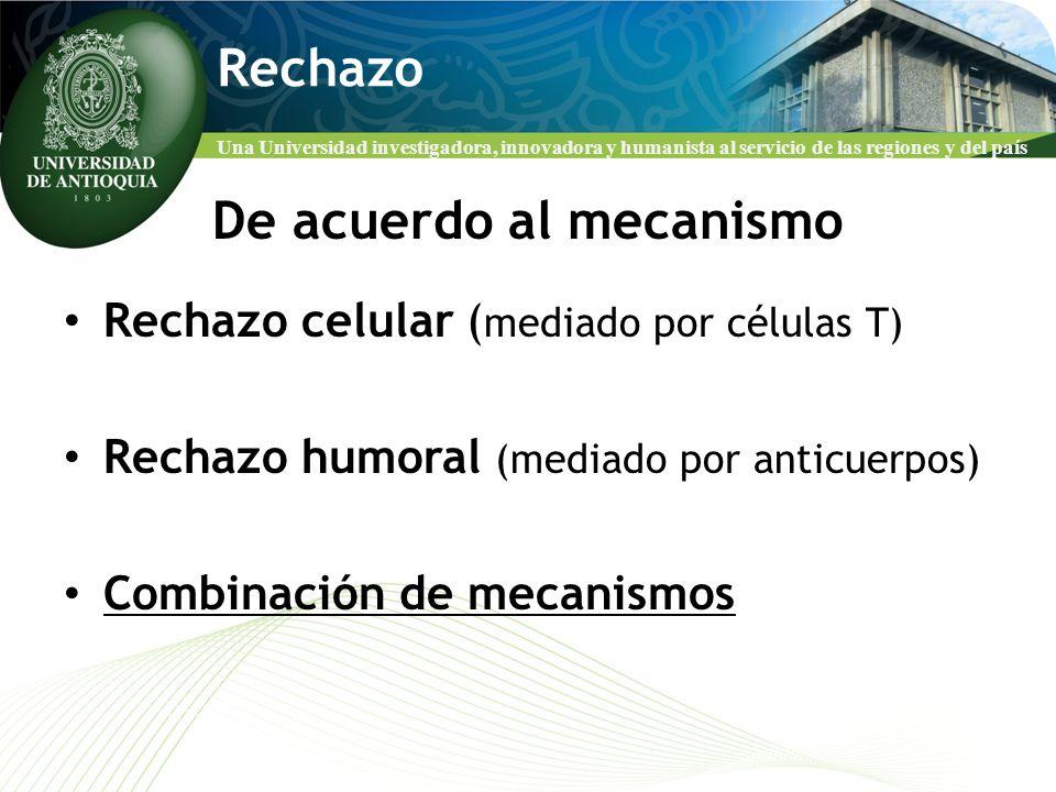 De acuerdo al mecanismo