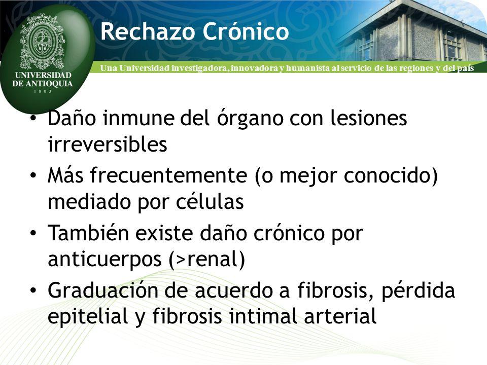Rechazo Crónico Daño inmune del órgano con lesiones irreversibles