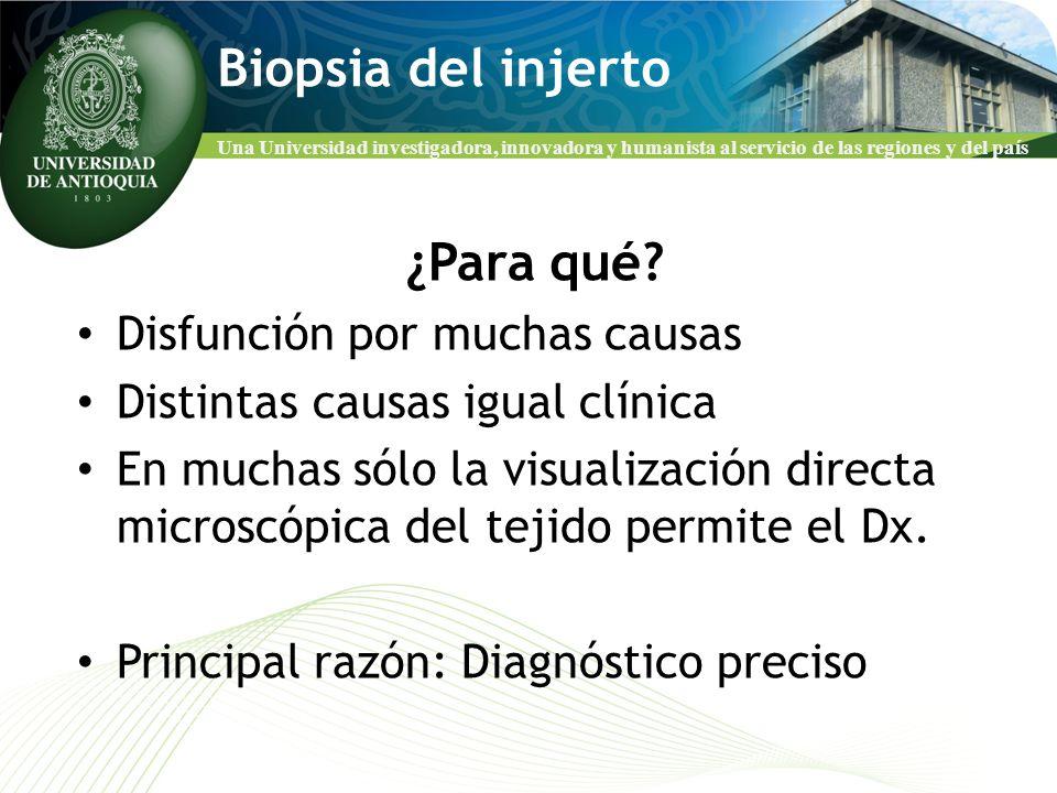 Biopsia del injerto ¿Para qué Disfunción por muchas causas