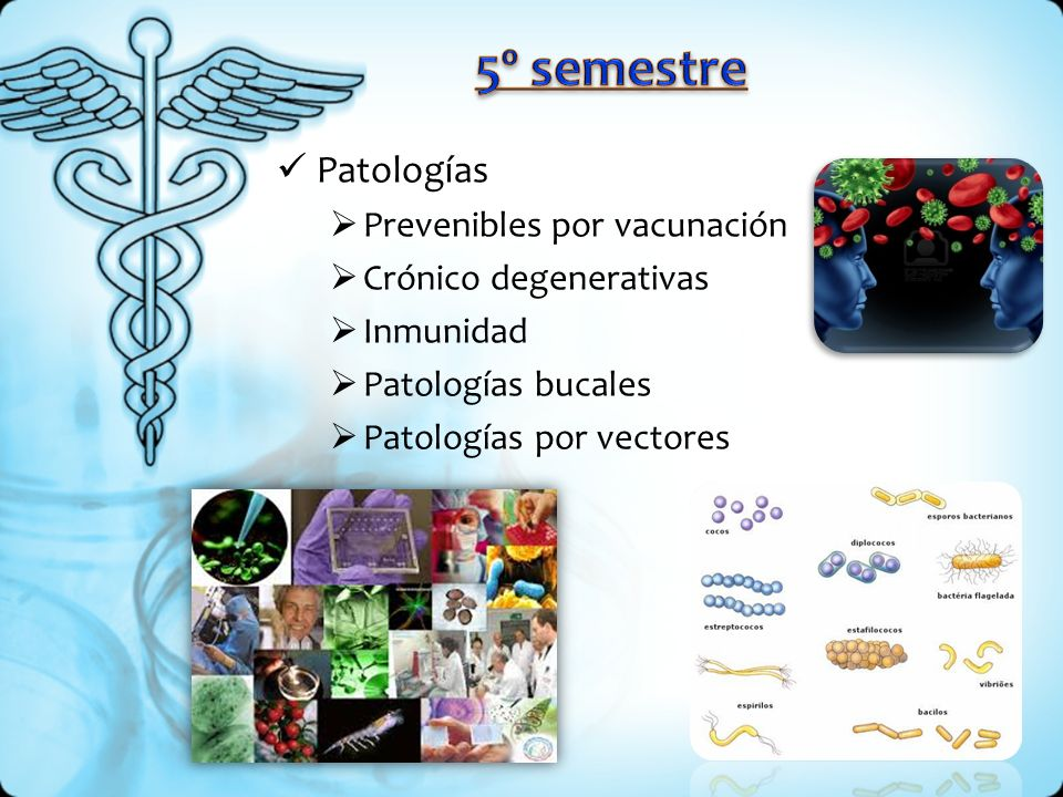 5º semestre Patologías Prevenibles por vacunación