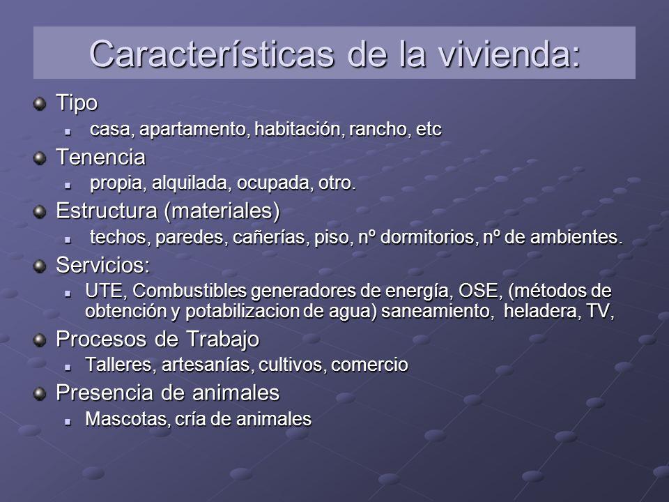 Características de la vivienda: