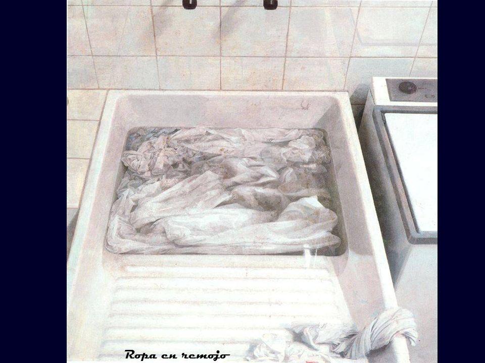La nevera de hielo El frigorífico Ropa en remojo