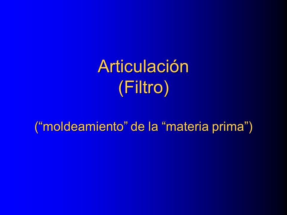 Articulación (Filtro) ( moldeamiento de la materia prima )