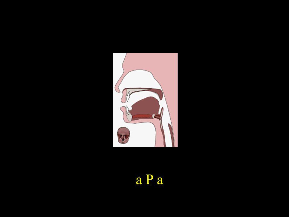 a P a