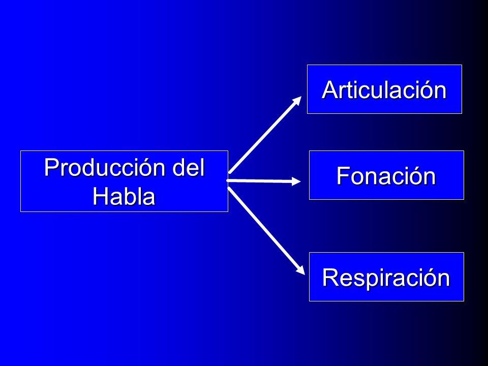 Articulación Producción del Habla Fonación Respiración
