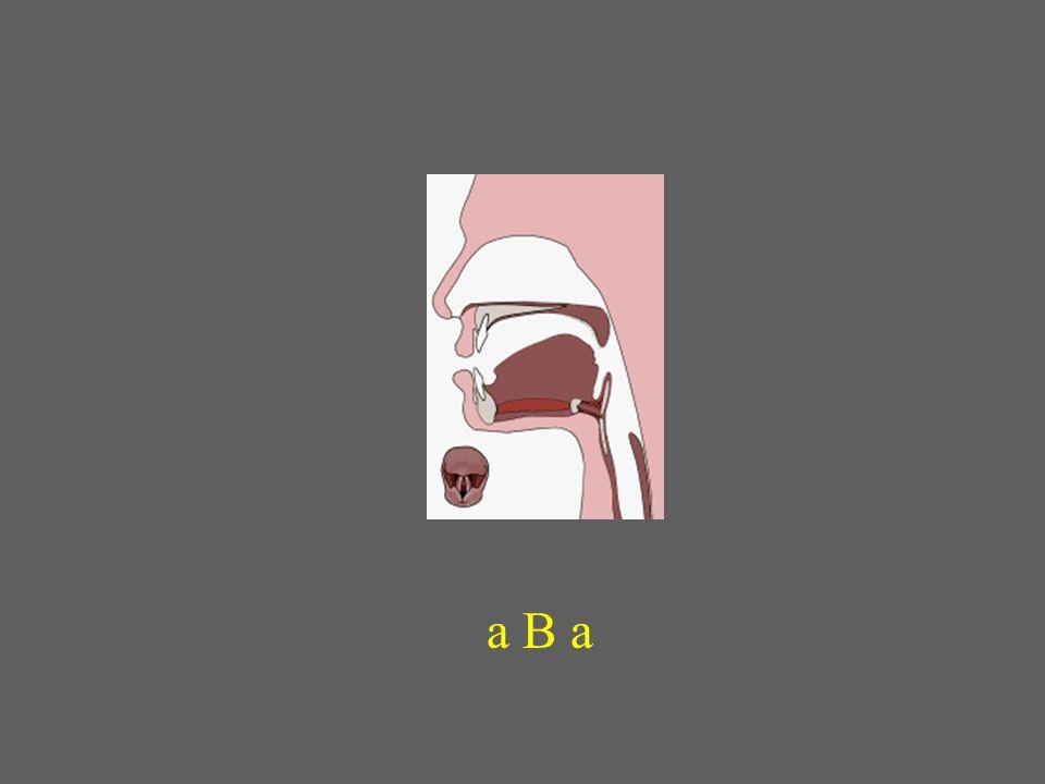 a B a