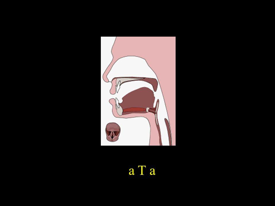 a T a