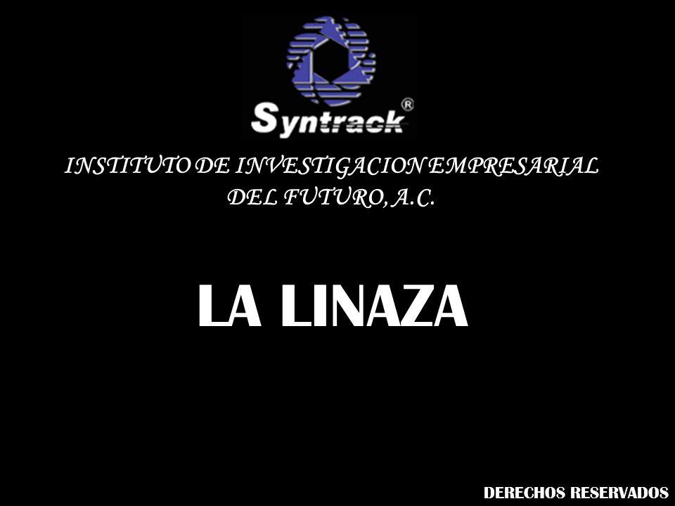 INSTITUTO DE INVESTIGACION EMPRESARIAL DEL FUTURO, A.C.