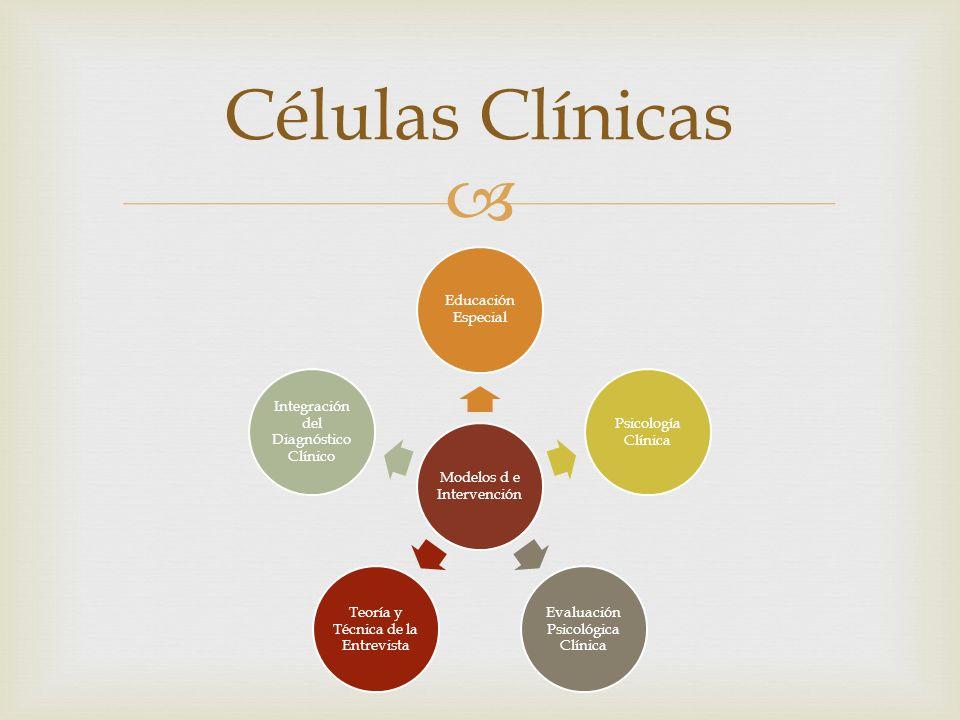 Células Clínicas Modelos d e Intervención Educación Especial