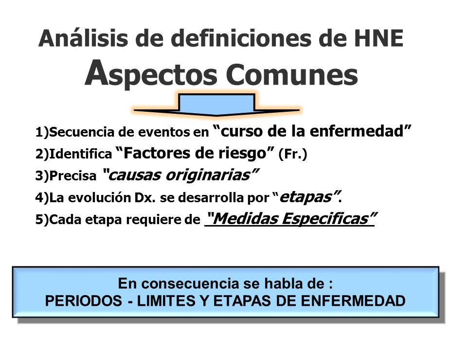 Análisis de definiciones de HNE Aspectos Comunes
