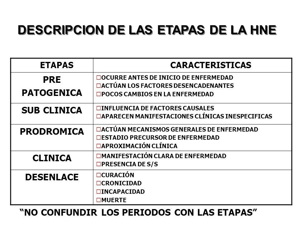 DESCRIPCION DE LAS ETAPAS DE LA HNE