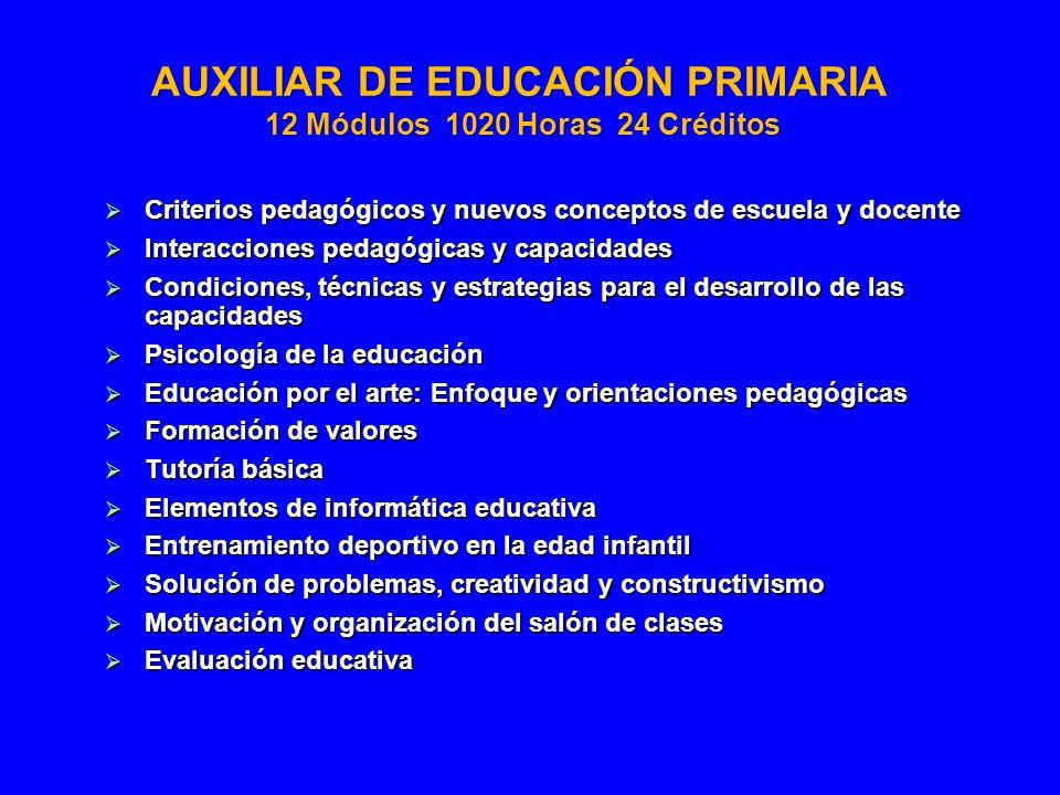 AUXILIAR DE EDUCACIÓN PRIMARIA 12 Módulos 1020 Horas 24 Créditos
