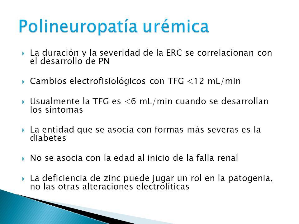 Polineuropatía urémica
