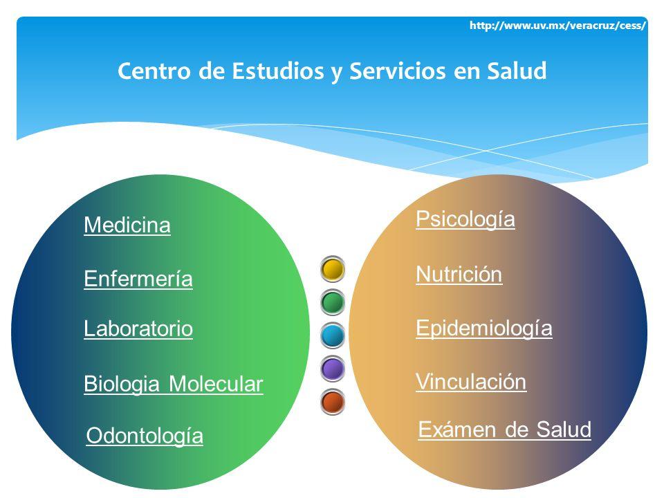 Centro de Estudios y Servicios en Salud