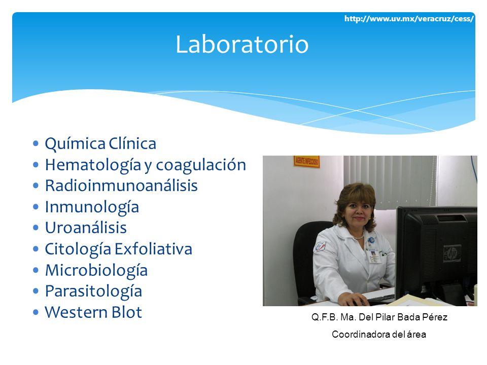 Q.F.B. Ma. Del Pilar Bada Pérez