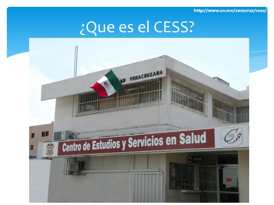 ¿Que es el CESS
