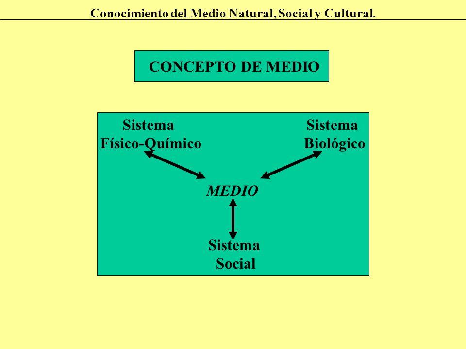 CONCEPTO DE MEDIO Sistema Físico-Químico Biológico Social MEDIO