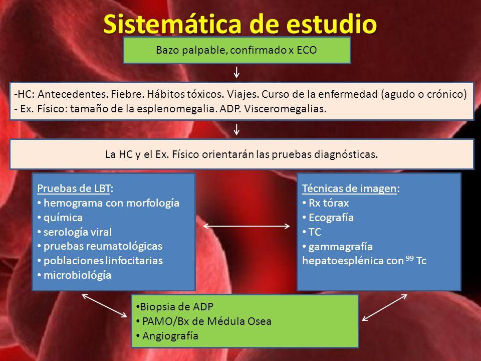 Sistemática de estudio