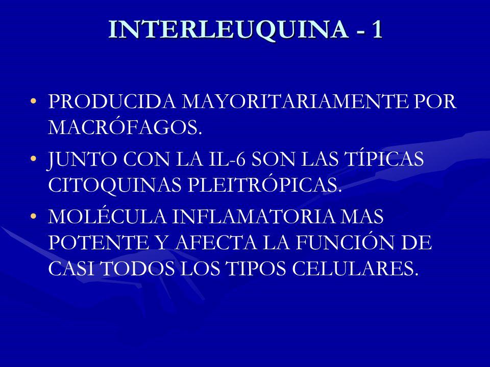 INTERLEUQUINA - 1 PRODUCIDA MAYORITARIAMENTE POR MACRÓFAGOS.