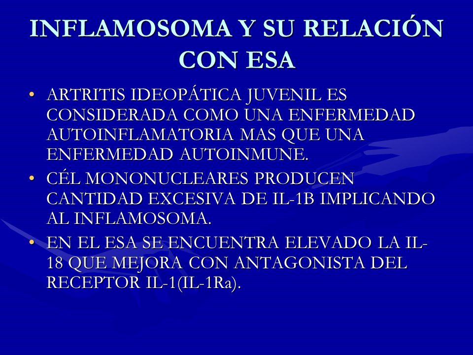 INFLAMOSOMA Y SU RELACIÓN CON ESA
