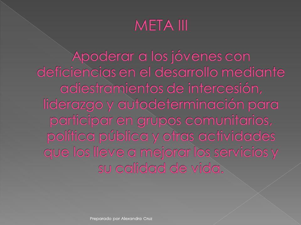 META III Apoderar a los jóvenes con deficiencias en el desarrollo mediante adiestramientos de intercesión, liderazgo y autodeterminación para participar en grupos comunitarios, política pública y otras actividades que los lleve a mejorar los servicios y su calidad de vida.