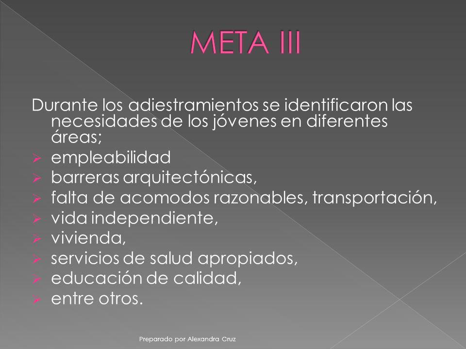 META III Durante los adiestramientos se identificaron las necesidades de los jóvenes en diferentes áreas;