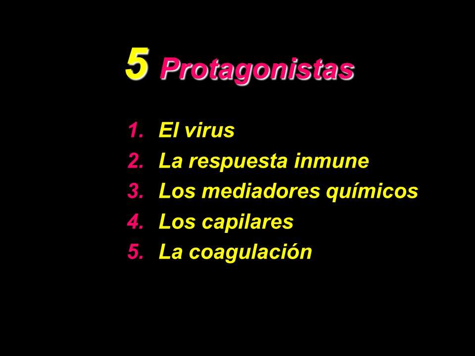 5 Protagonistas El virus La respuesta inmune Los mediadores químicos