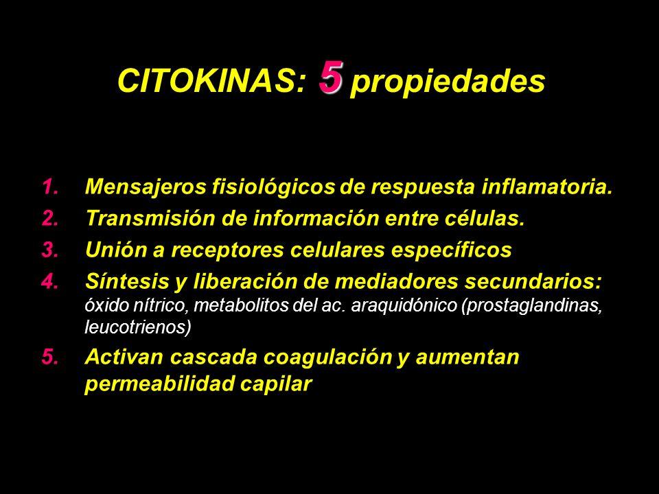 CITOKINAS: 5 propiedades
