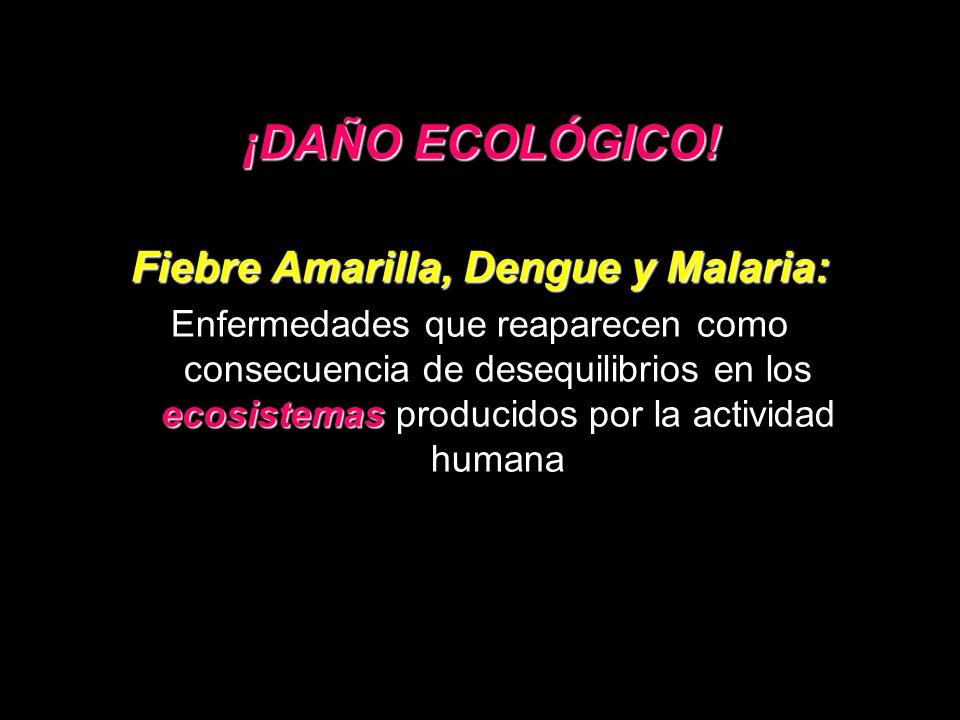 Fiebre Amarilla, Dengue y Malaria: