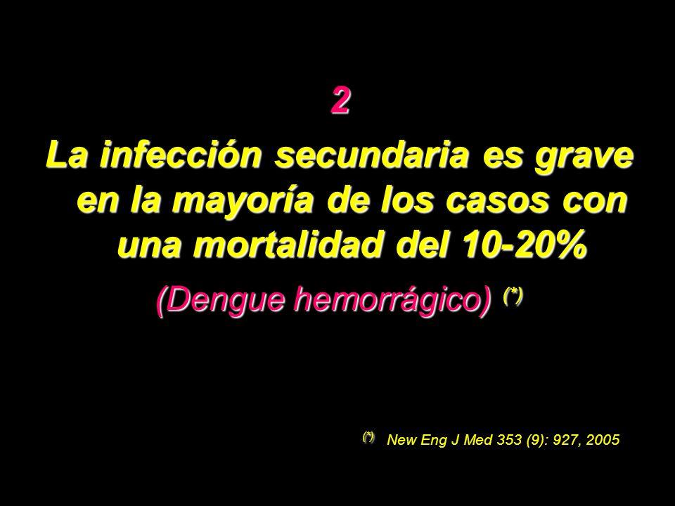 (Dengue hemorrágico) (*)