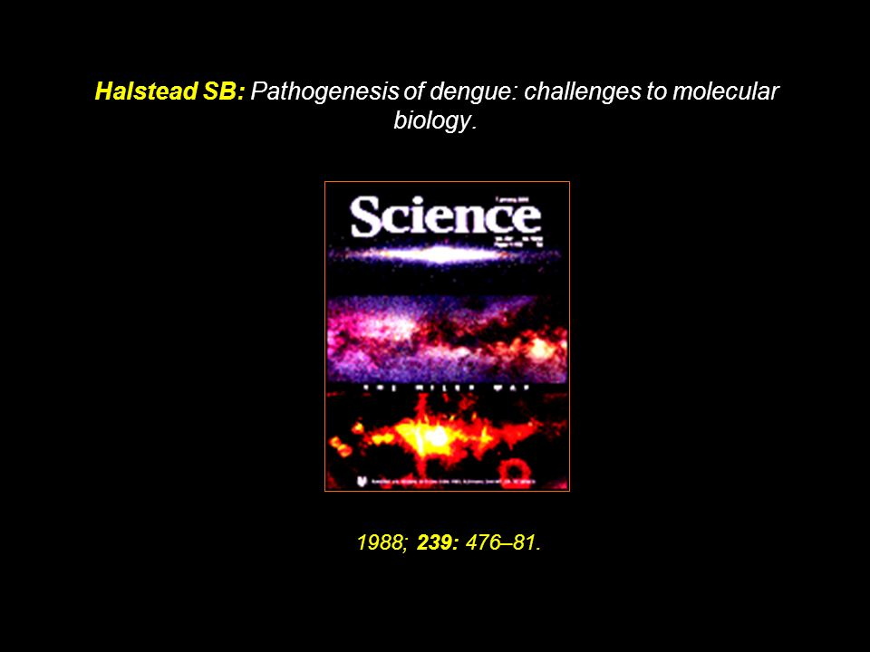 Halstead SB: Pathogenesis of dengue: challenges to molecular biology.
