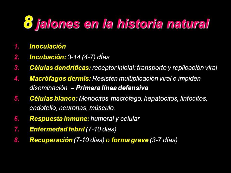 8 jalones en la historia natural