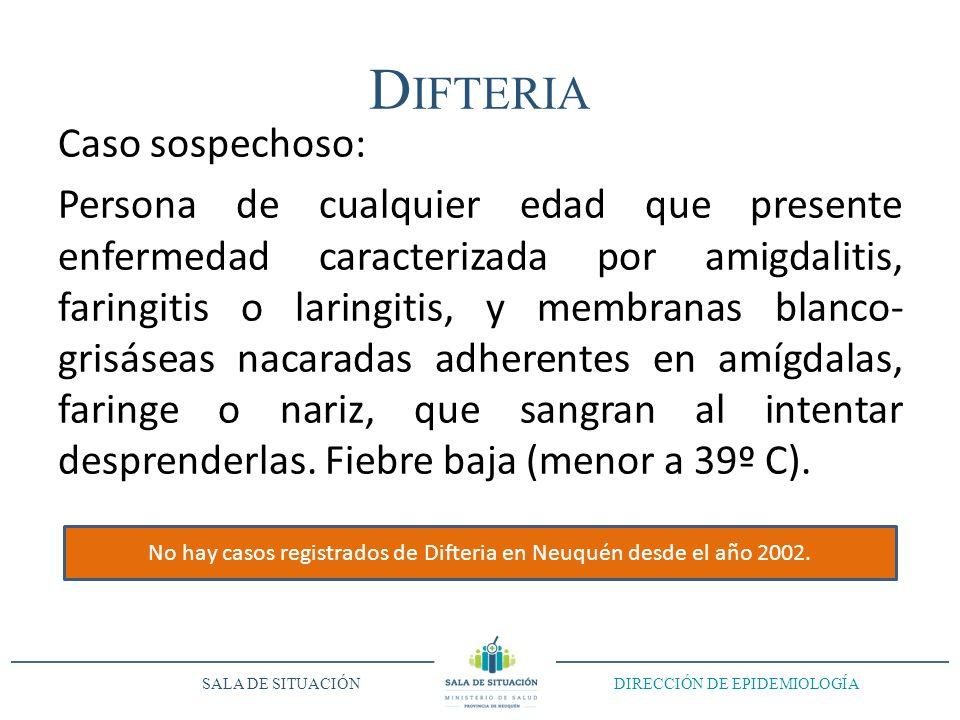 No hay casos registrados de Difteria en Neuquén desde el año 2002.