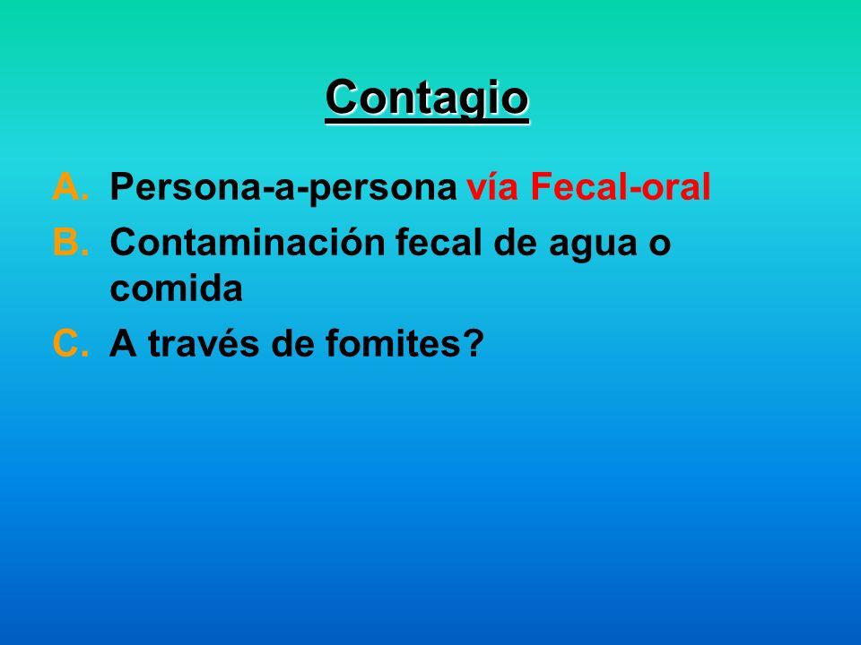 Contagio Persona-a-persona vía Fecal-oral